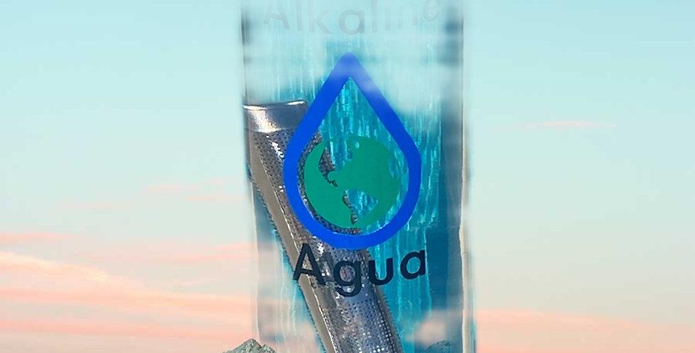 ML Alkaline Agua Filter Bottle with Filter Stick