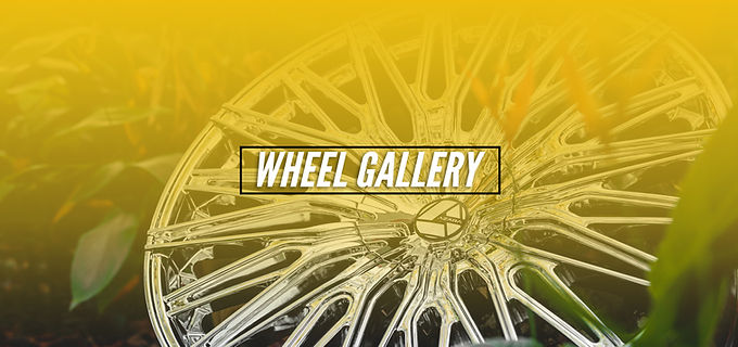 1- Wheel Gallery Azara Web Header.jpg