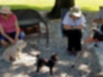 Dog-Park-1-2.jpg