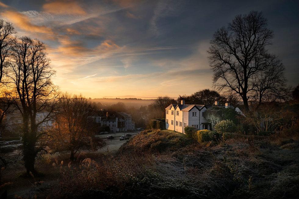 Tunbridge Wells common house winter webs