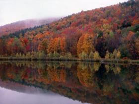 Misty Reflection.jpg