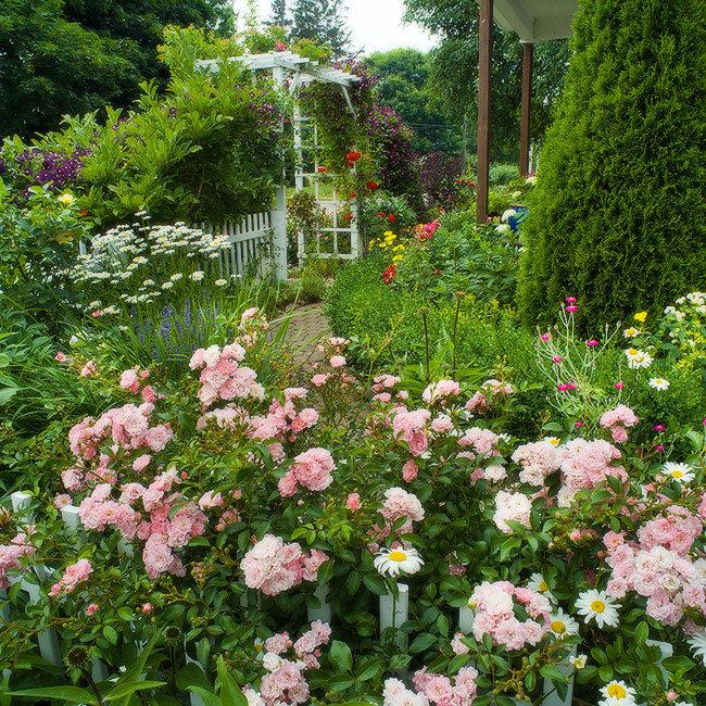 Carter Garden in Claremont.jpg