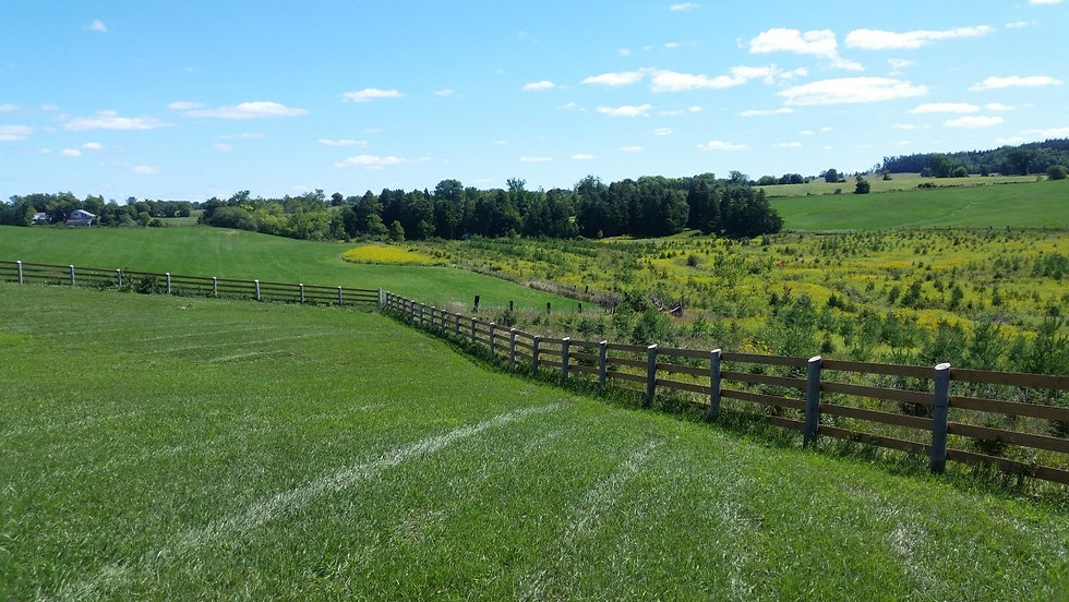 Ontario Farmland Greenbelt.jpg