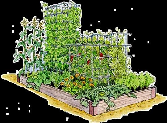 Gardeners_edited.png