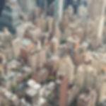 Snapseed 6.jpg