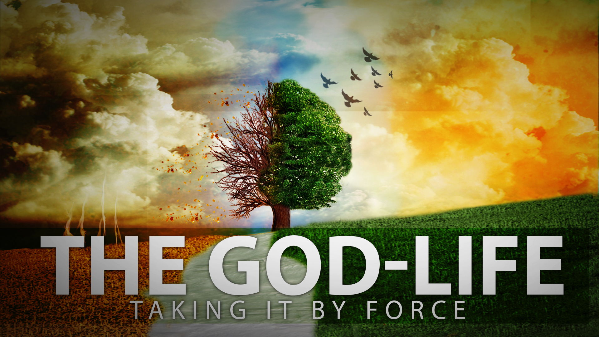 The God-Life series