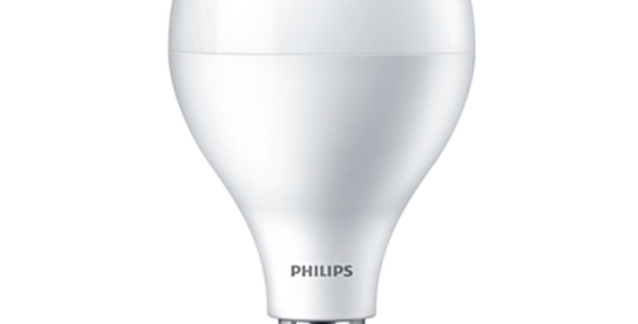 Philips LED 18W Mega Bright Daylight