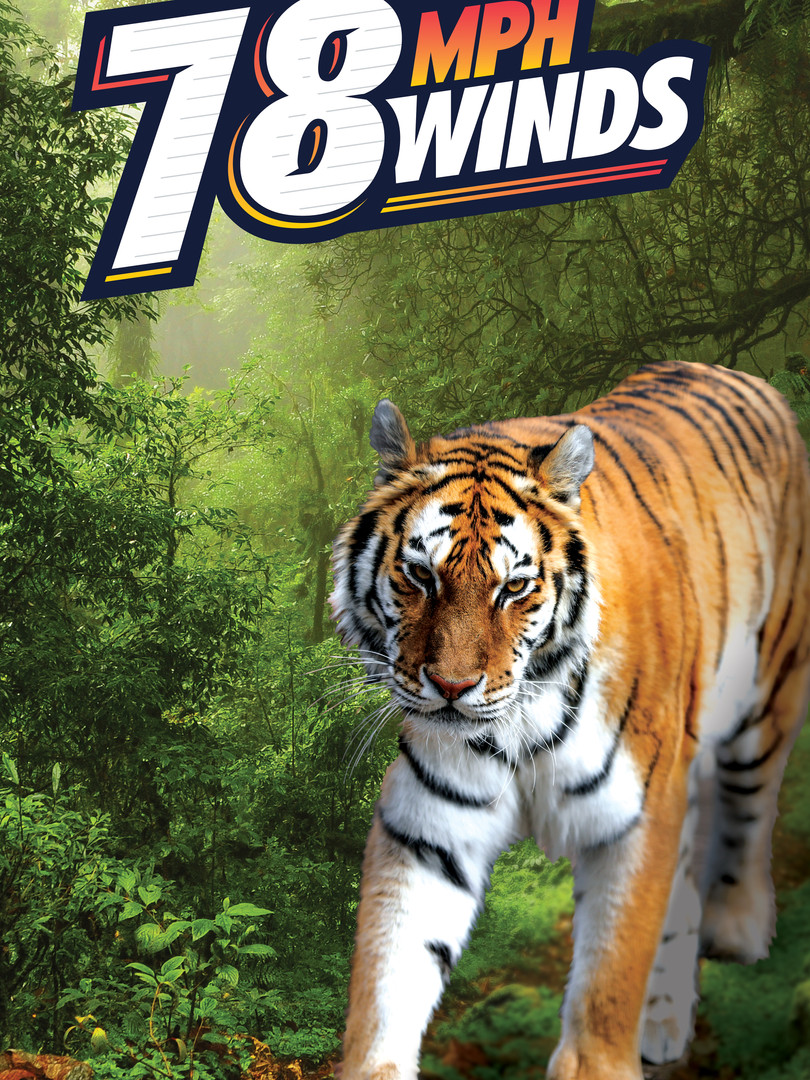 Simulator_Artwork_Custom-Tiger_sample.jp