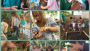 Farm to Keiki Program