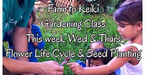 This Week In Gardening Class