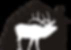 final FTH logo_edited.png