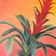 "FLOWER POWER 30""x 28"", 2019, Oil on canvas, $290"