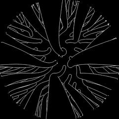 enjoliveur vélo spirale