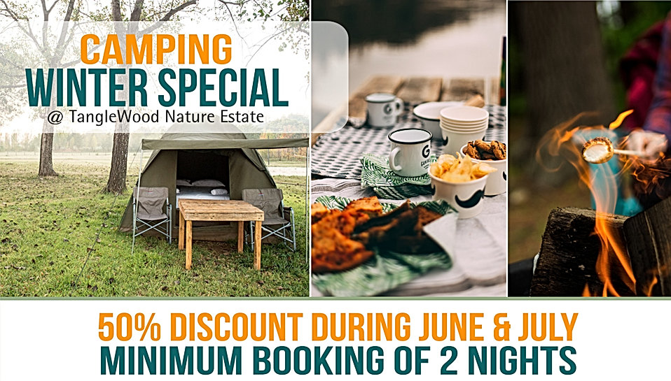 TangleWood Nature Estate Campng Specials