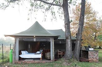 TangleWood Nature Estate Luxury Tent
