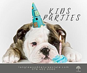 ADVERT KIDS PARTIES 4.png