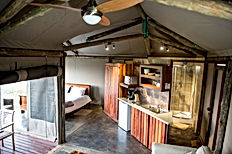 TangleWood Nature Estate Glamping