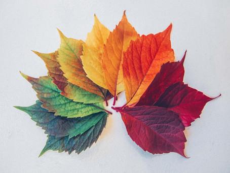 Dias de Outono