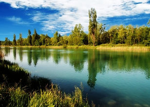 fiume mincio.jpg