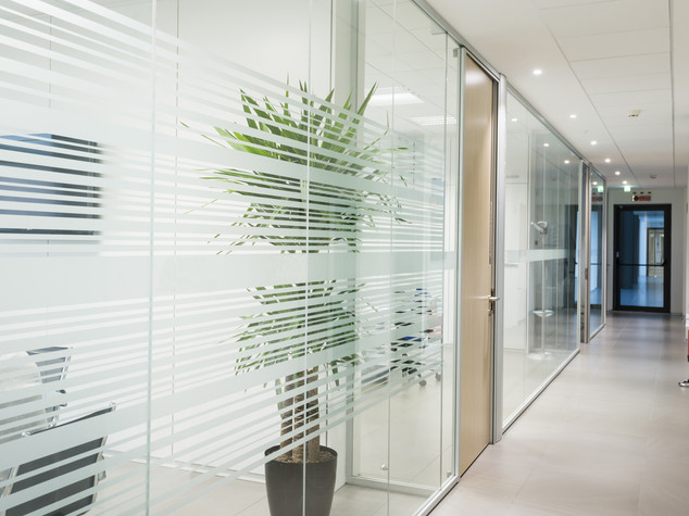 Vinilo privacidad oficinas