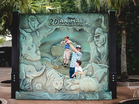 Disney World Part 2 (Of 2)
