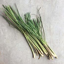 lemongrass-bundle.jpg