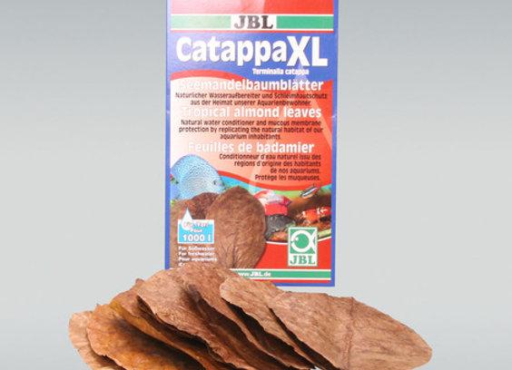 JBL Catappa XL (FEUILLES DE BADAMIER)