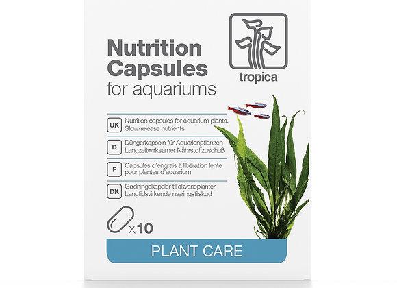 Nutrition Capsules 10 pcs (capsules d'engrais)