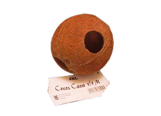 JBL Cocos Cava 1/1 M