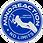 Logo Mindreaction (1).png