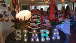 Private birthday party event in Sarasota, Fl