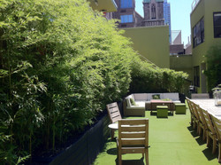 Bamboo Courtyard at the OUTNYC