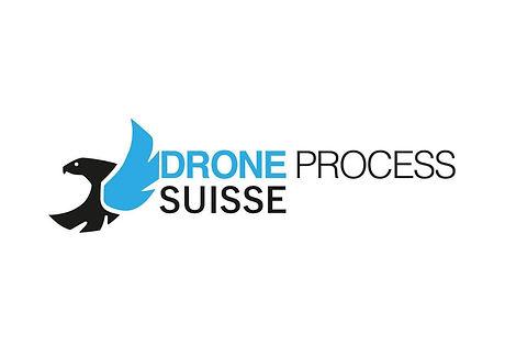 logo DP.jpg