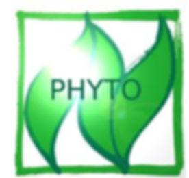Planphyto.jpg