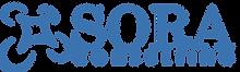 SORAC-1024x307.png