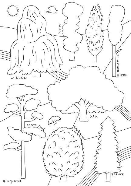Tree Shape Colouring Sheet_lucyscott_202