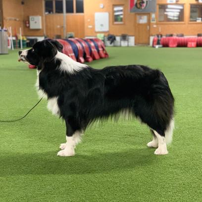 Zeus Training