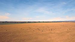 Sierra de La Ventana - Argentina