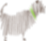 as_dog_03.png