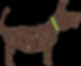 Animal Sense dog logo