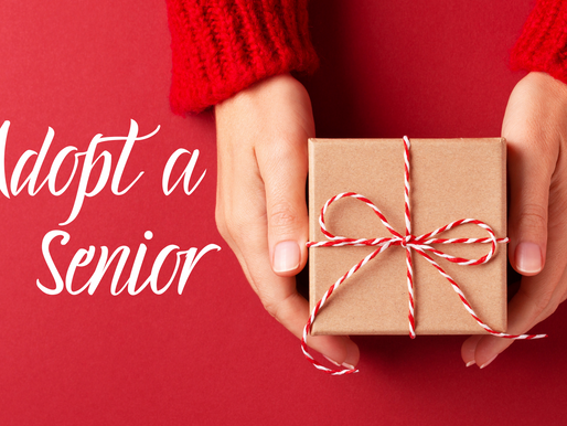 Brighten the holidays for a Carlsbad senior in need
