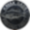 TRAIL-Metallic-600.png