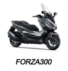 FORZA300.jpg
