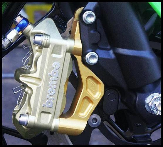 ขาปั้มหน้า Ninja250-300 M4-100mm RSV Racing