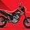 Thumbnail: HONDA CRF250M (MOTARD)
