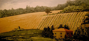 Hillside Vineyard NEW.jpg