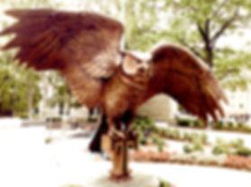 Temple Owl NEW.jpg