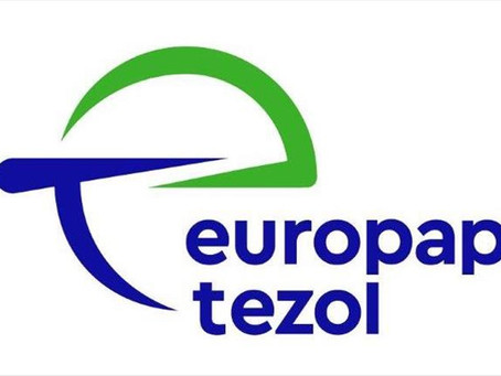 TEZOL FTR Değerlendirme Raporu Hakkında