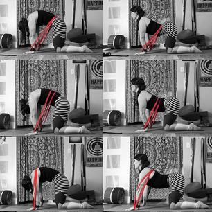 Spinal Segmentation Feedback