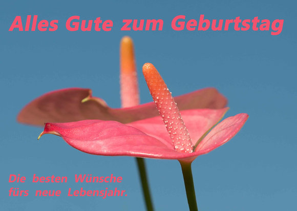 Geburtstagskarte Blume